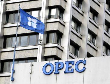 Страны ОПЕК не договорились о добыче нефти