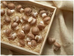 На грибном рынке ценовой спад после праздников