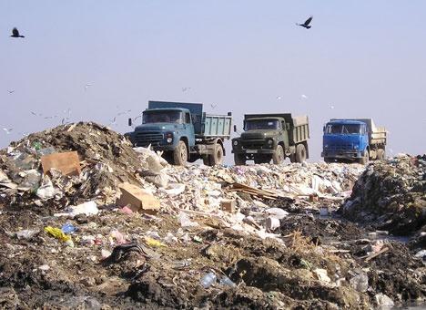 До августа Киев завалят 5 тыс. тонн львовского мусора