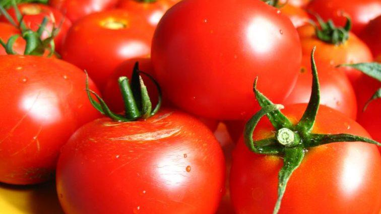 Через несколько дней помидоры существенно подешевеют