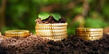 7 важных вопросов о земельном налоге