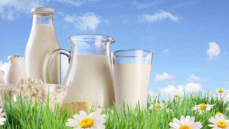 Молоко подорожает до 15 грн за литр