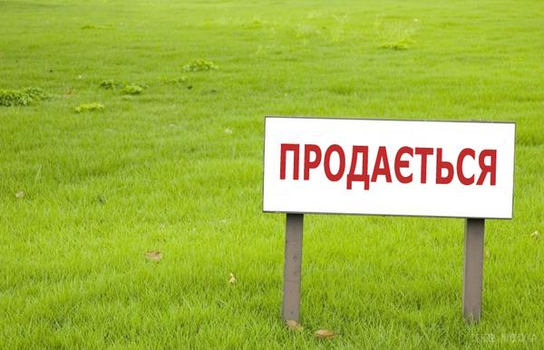 Как в Украине подорожает земля : цены шокируют
