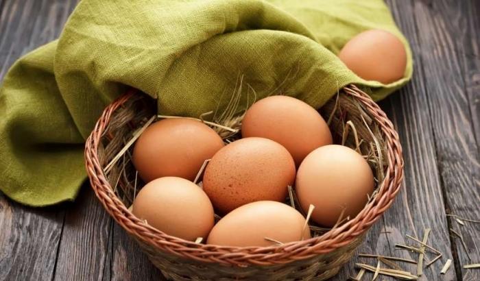 Яйца вскоре станут деликатесом для украинцев