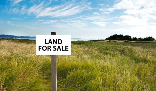 Почему стране необходим свободный рынок земли