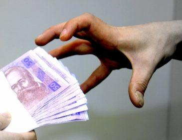 Как коррупционеры наживаются на субсидии (ВИДЕО)