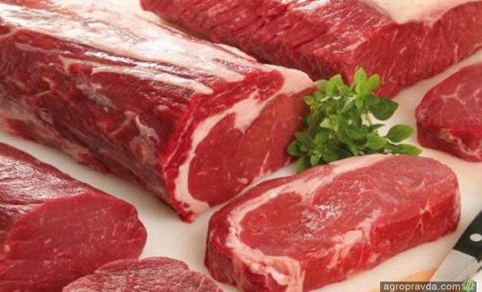 Украина открыла рынок Египта для говядины