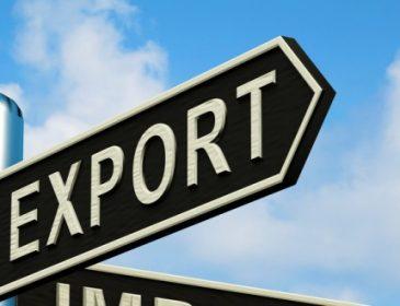 Н.Микольская: торговля с соседними странами должна стать приоритетной