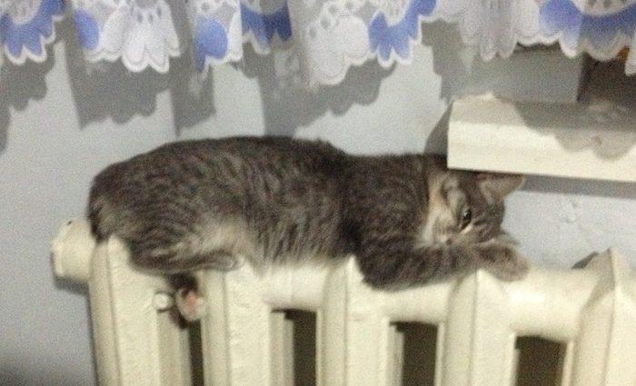 У кого дороже: сколько стоит отопление в Украине, Польше, России и Беларуси