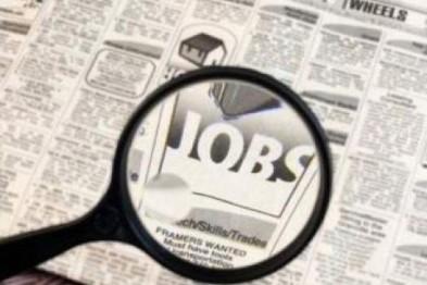 Стало известно сколько будут получать безработные в 2017 году