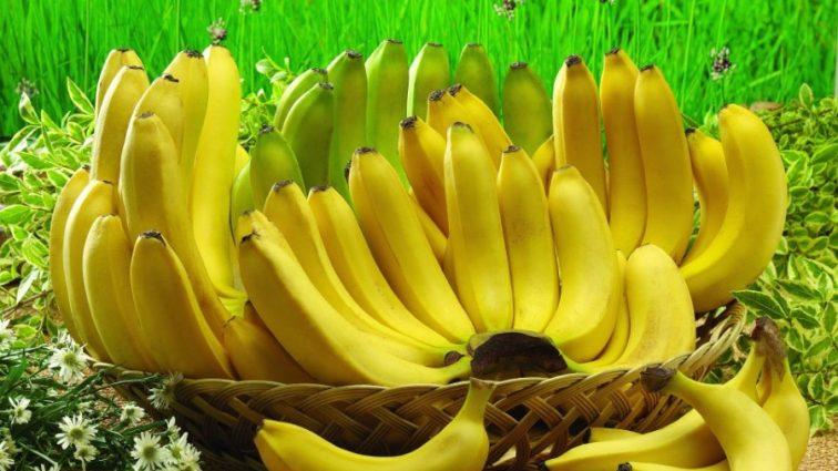 Бананы, кокосы, апельсиновый рай: цены на экзотические фрукты стремительно упали!