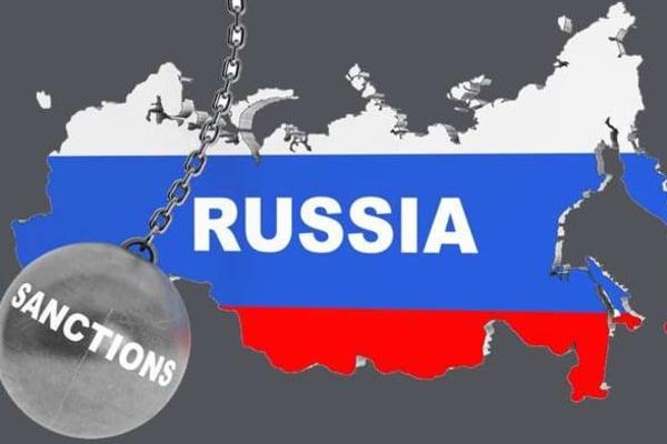 Санкции работают: в России начали официально продавать собачатину