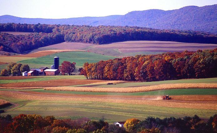 Эксперт о земельной реформе: не больше 500 га земли в одни руки