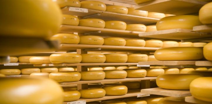 Дороже еще не было: цены на сыр достигли своего пика