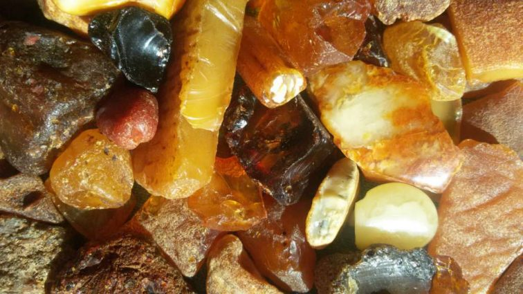 Контрабанда янтаря: как из Украины вывозят солнечный камень