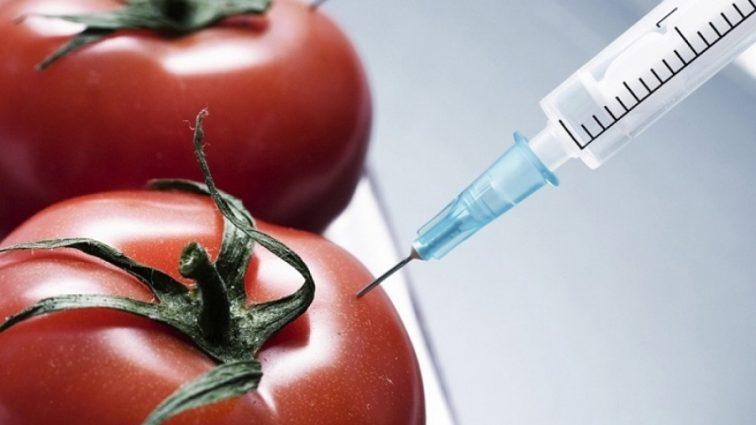Созданы идеальные овощи и фрукты