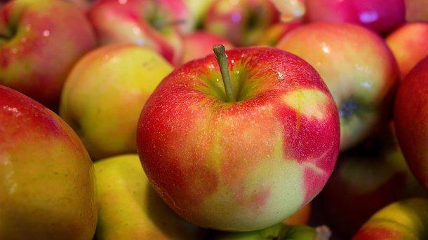 Экспорт яблок из Украины вернулся на докризисный уровень