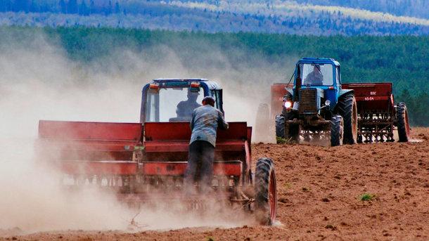 Сколько украинцы зарабатывают на черноземе и как рынок земли изменит жизнь