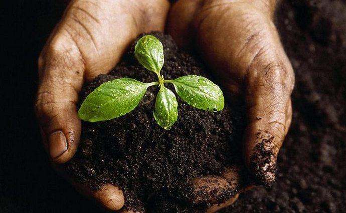 Перезапуск рынка земли или «экономический нонсенс»