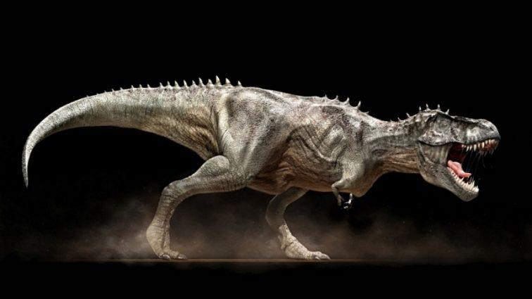 Археологи обнаружили эмбрионы динозавров