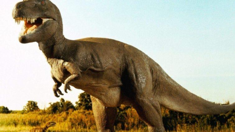 Эксперты развенчали миф о шумных динозавров — они ходили молча