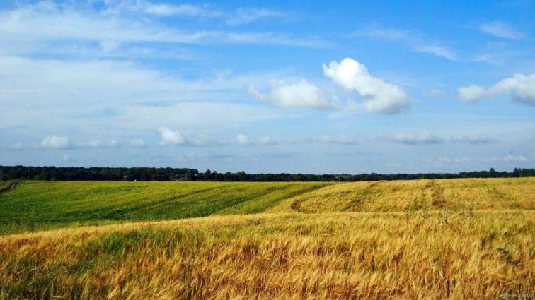 Когда вступит в силу Законопроект о земельной реформе
