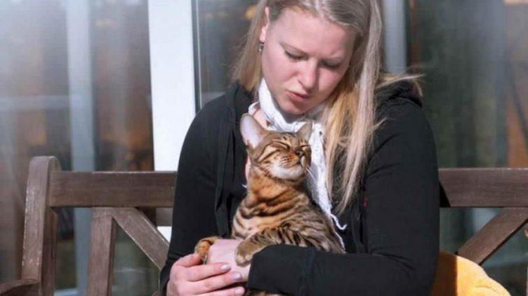 Ученые рассказали о целебном способность котов
