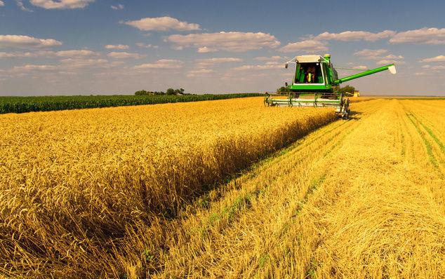 Что тормозит земельную реформу в Украине