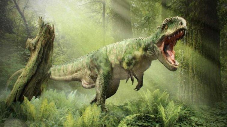 Ученые разрушили древнюю мечту человечества
