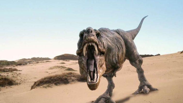 Стало известно, что сделало динозавров настолько популярными