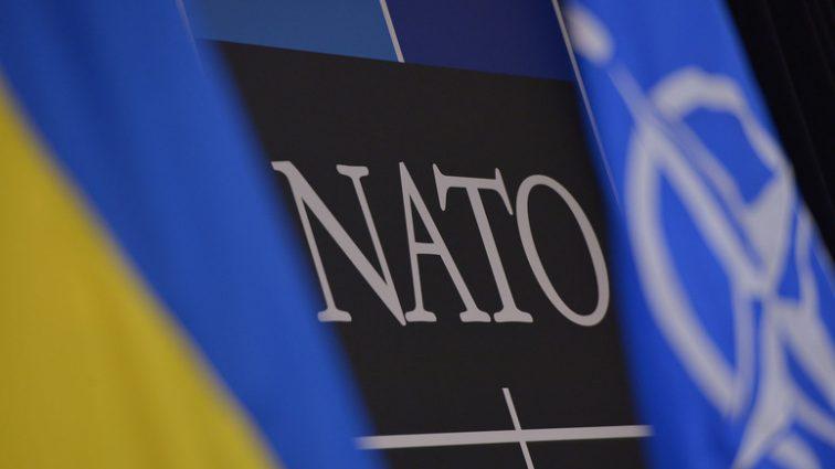 Сколько украинский поддерживает вступление Украины в НАТО — опрос