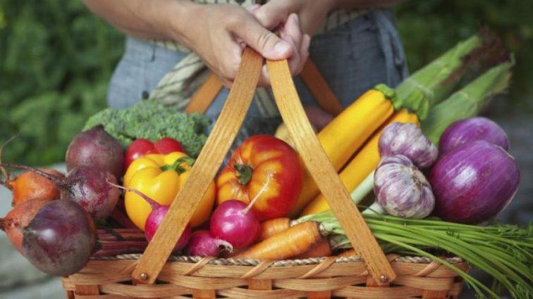 ГМО или нет: как правильно выбрать продукты