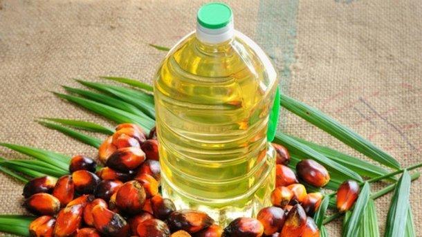 Украина стремительно наращивает импорт пальмового масла