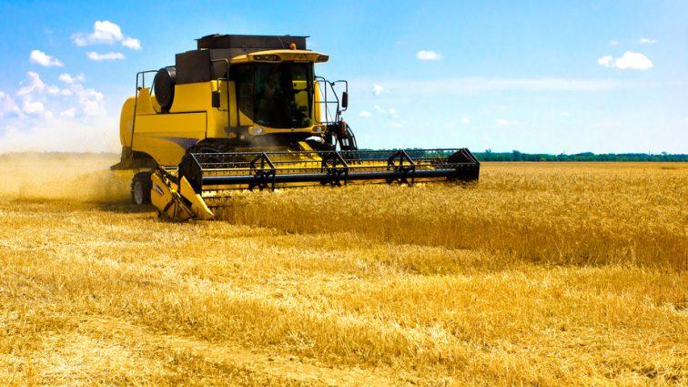В Украине стартует облава на аграрных рейдеров