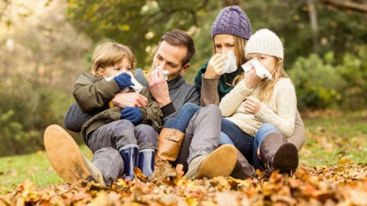 Осень без простуды: вкусный способ укрепить иммунитет