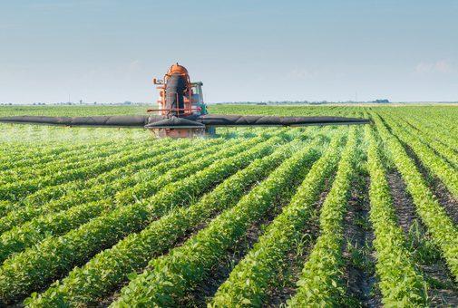 МВФ принял решение о необходимости проведения земельной реформы в Украины