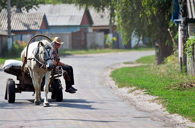 Украинцы из городов платят деньги, чтобы копать картошку и доить коз
