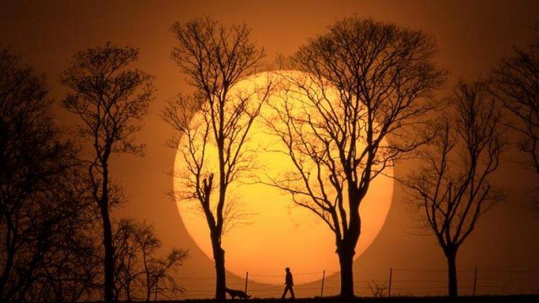 Астрономы спрогнозировали появление второго Солнца