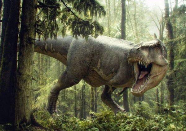 Для чего тираннозавру передние лапы: мнение ученых