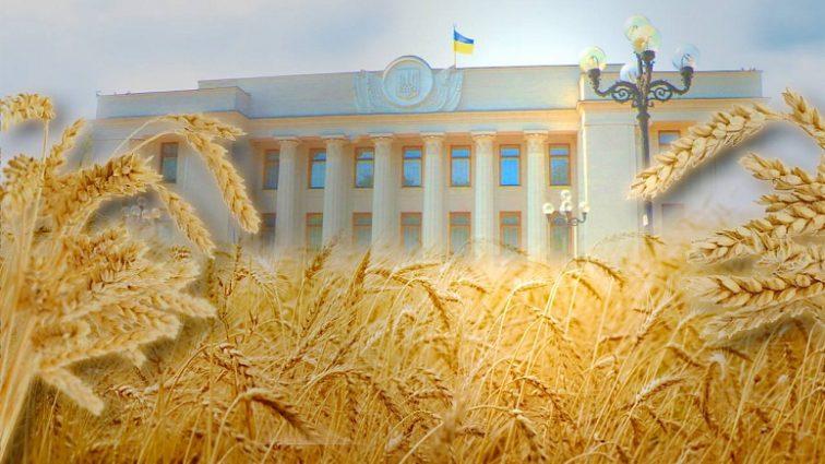 Украина будет сотрудничать с Саудовской Аравией в сфере сельского хозяйства