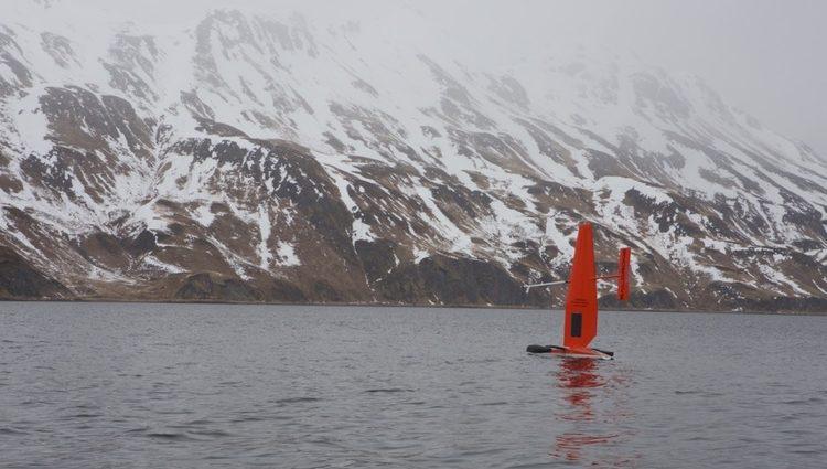 Новые лодки-беспилотники помогают в борьбе с изменениями климата