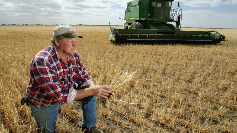 Банки против аграриев: основные проблемы сотрудничества
