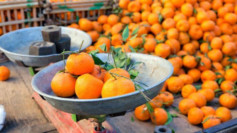 Снизились цены на продукты из Турции