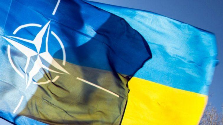 Подготовка к вступлению Украины в НАТО: принята резолюция