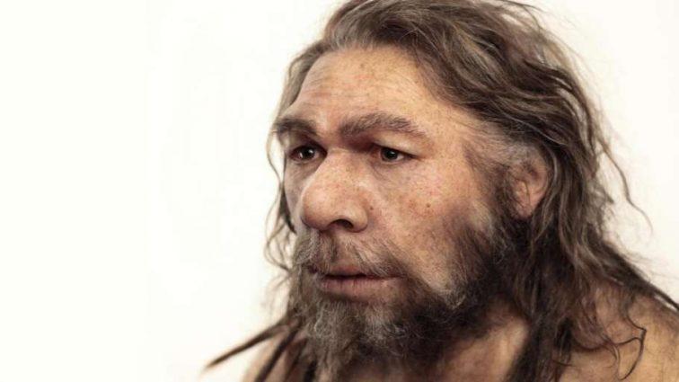 Новые исследования ученых: что досталось нам в наследство от неандертальцев?