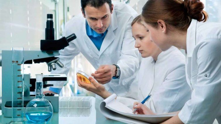 Создана новая платформа для выращивания человеческих органов