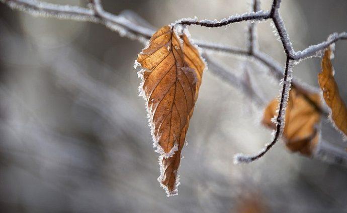 Погода на выходных приготовила украинцам морозный сюрприз