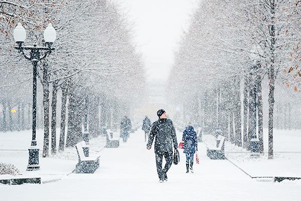 Какой в этом году будет зима? Синоптики сделали подробный прогноз