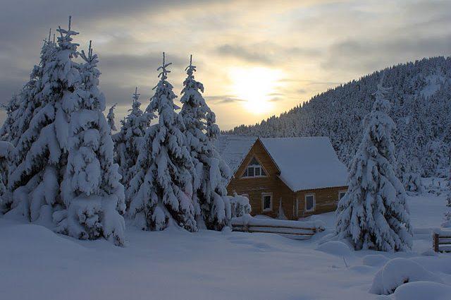Для любого кошелька: Во сколько обойдется зимний отдых в Карпатах