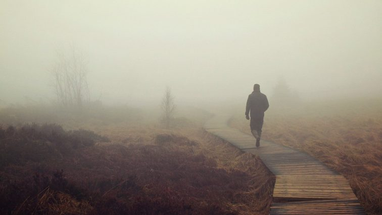 От туманов к мороси: чего ждать от погоды 9 ноября